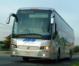 Imágenes y fotos chidas de autobuses